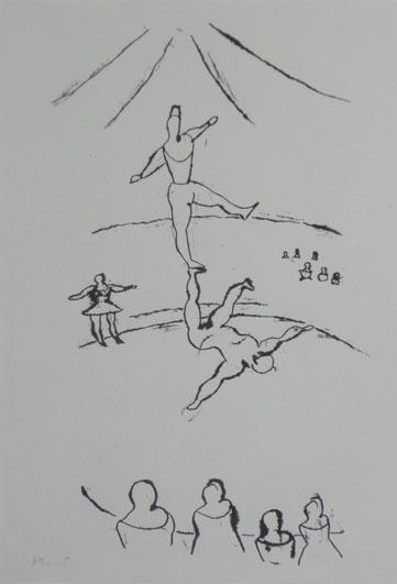 301_acrobates